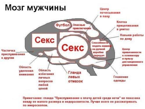http://cs226.vkontakte.ru/u27437904/7151925/x_ca412fb0.jpg